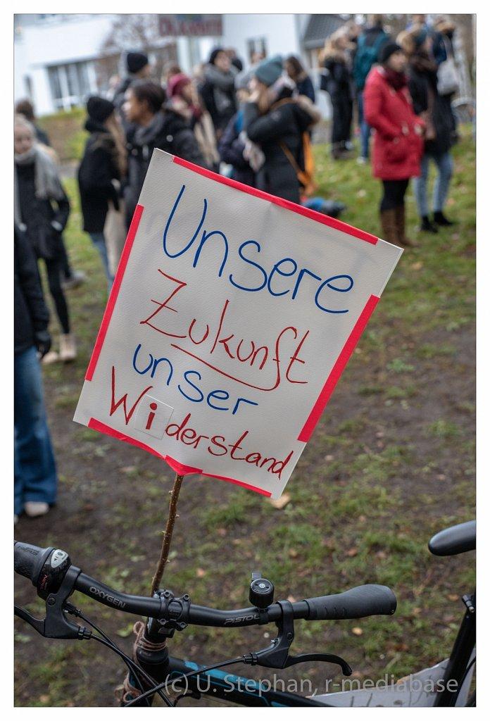 Schul- und Klimastreik vor dem Kieler Landeshaus